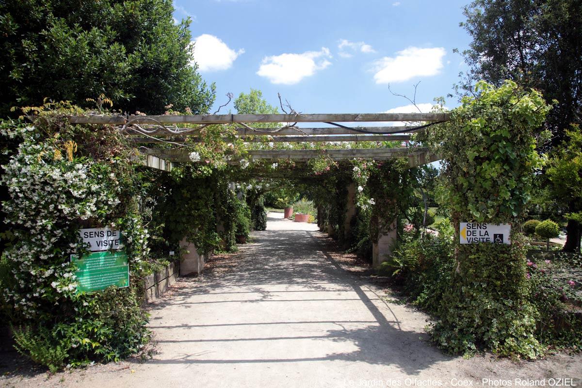jardin des olfacties Coëx