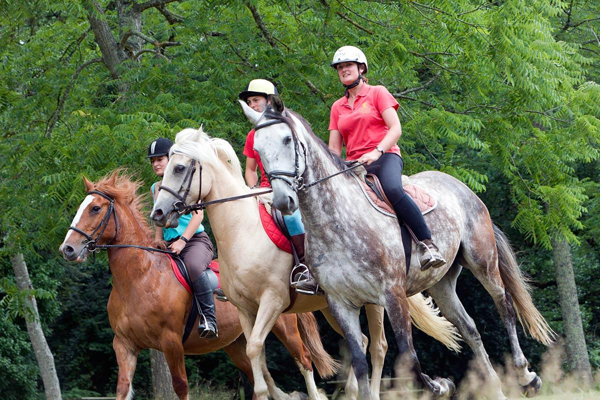 cheval camping Castel 5 étoiles en Vendée