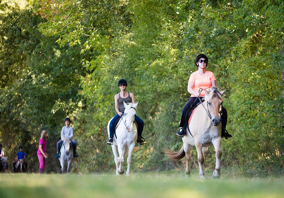 équitation camping Castel 5 étoiles en Vendée