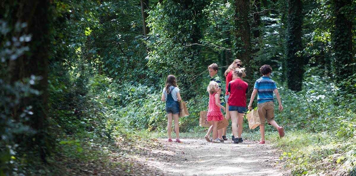 promenade en foret camping Castel 5 étoiles en Vendée
