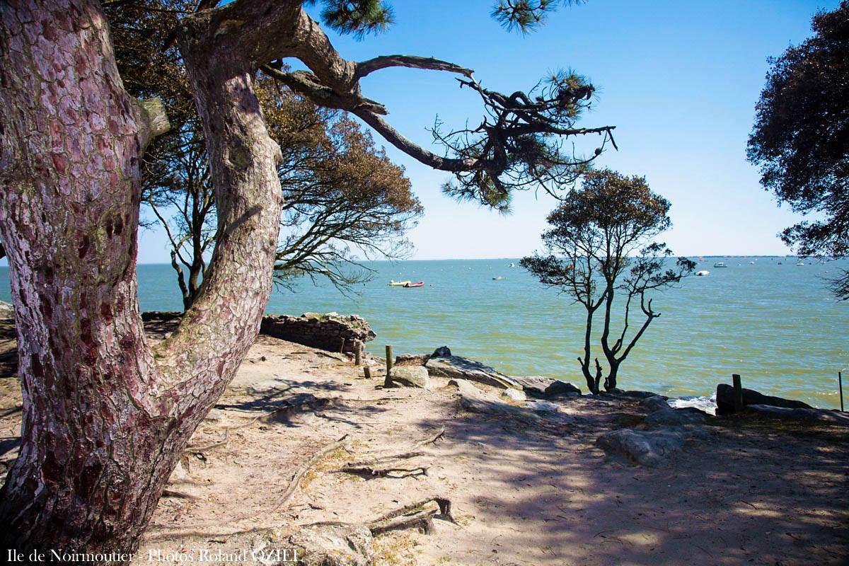 plage du bois de la chaize noirmoutier