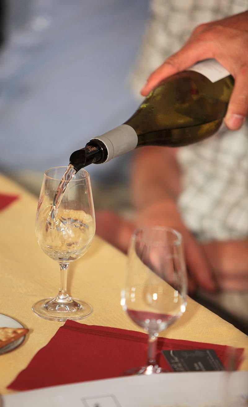dégustation vin de vendée
